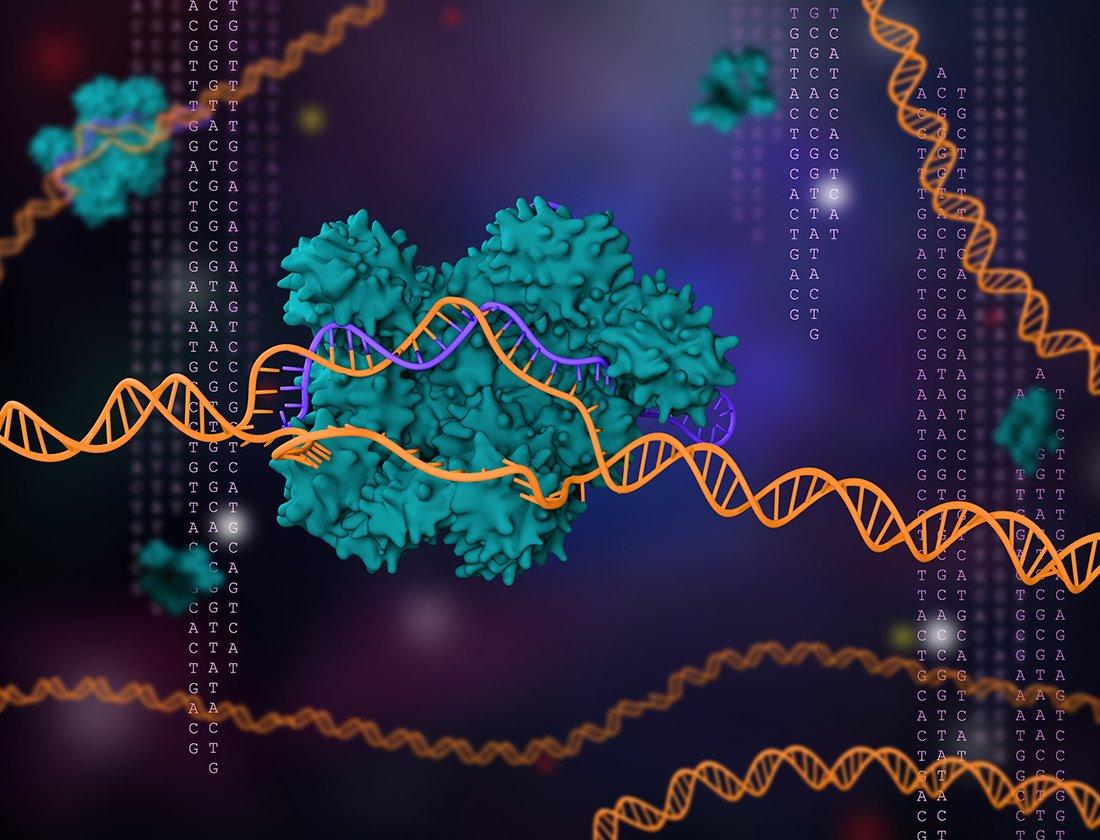 Functional Genomics Of Immune Cells